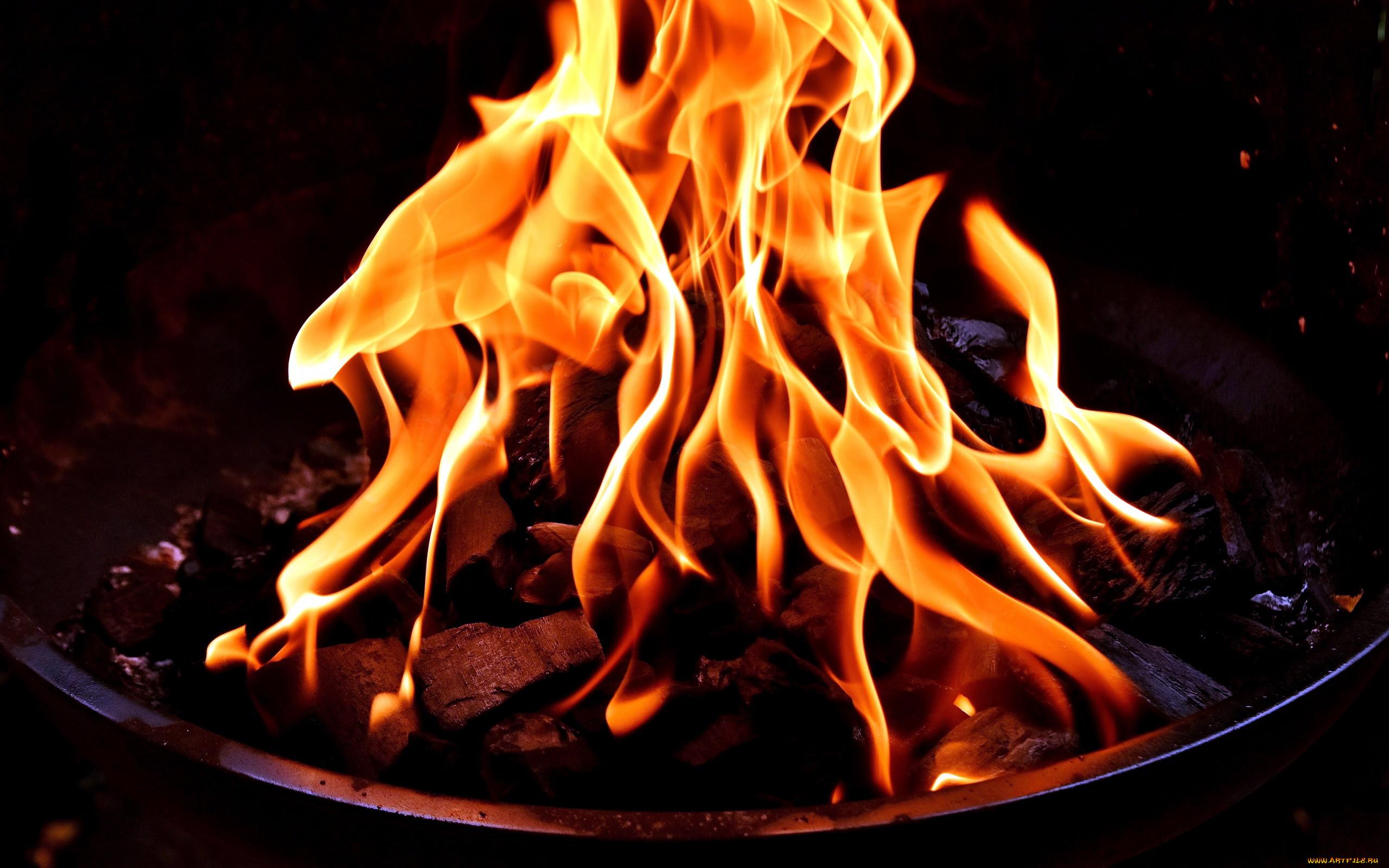 картинки огня красивого прибег